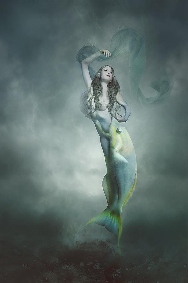 Symbiosis by AmandineVanRay
