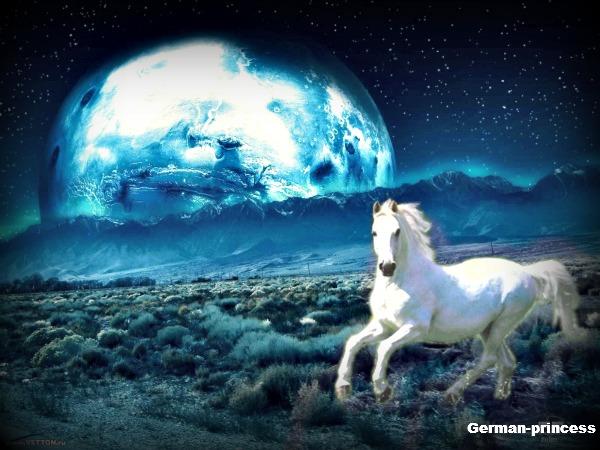 moonlite horse photo manipulation by German-princess