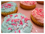 Bake Sale Cupcakes 2
