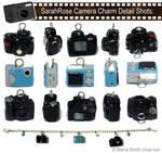 SarahRose Camera Charms