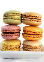Macaron2015 by chat-noir