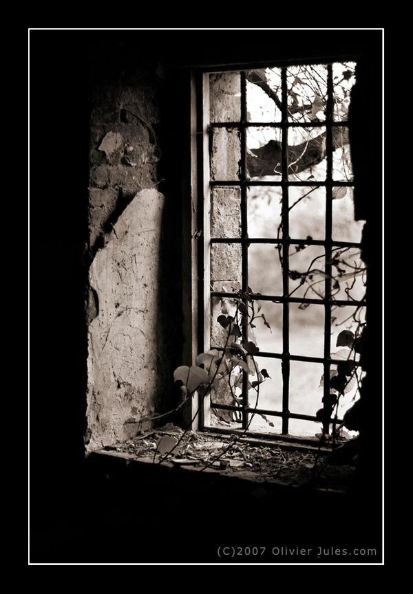 Prozori koji govore Decay_by_Anxanum