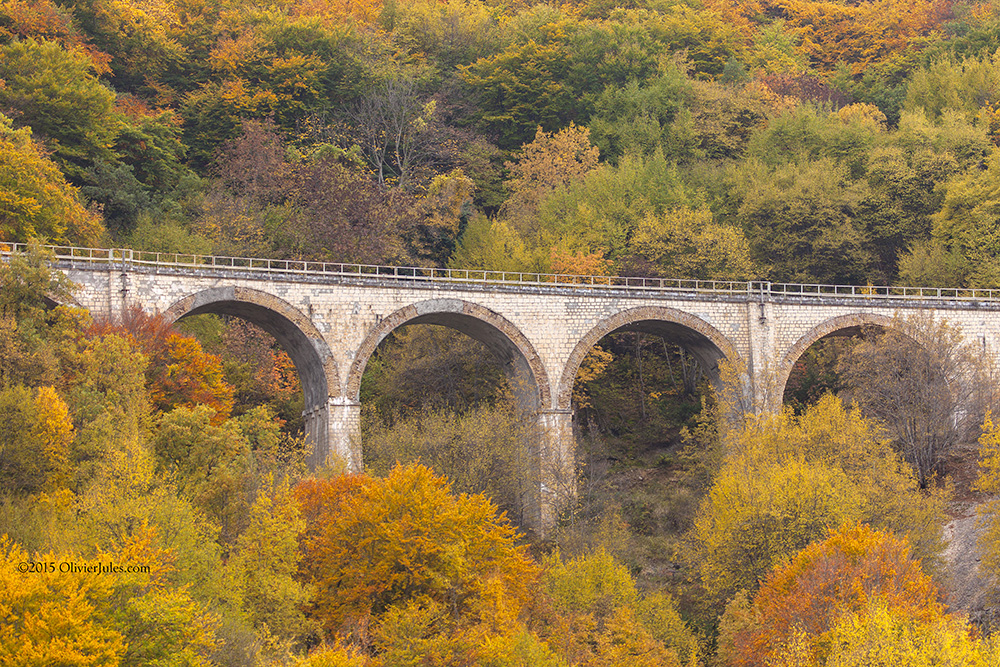 Autunno by OliverJules