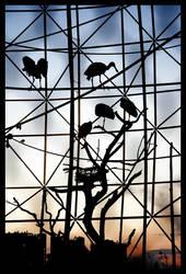 free as a bird II. by bigcbigc