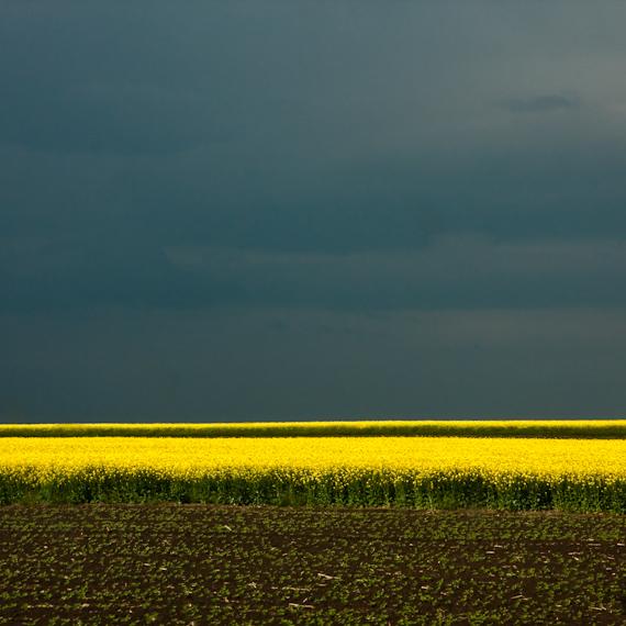 nature minimal by bigcbigc