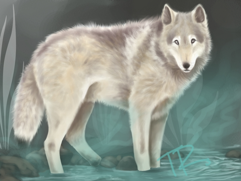 WOLF PAINT by Tiahemet-Rhaine