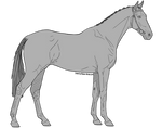 Horse Lines Pack by Rhaine-Horses