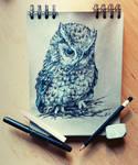 Daily sketch 1 - Eastern Screech Owl