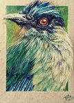 170816-20 ACEO I see you