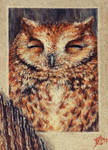 170928-23 ACEO Happy sleepy owl + TIME-LAPSE by Crateris