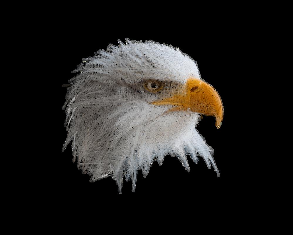 Geometric bald eagle by Animatron-io