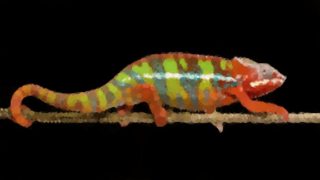 Circular chameleon by Animatron-io