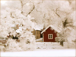 RedHouse in frosted woods