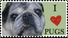 Heart Pugs Stamp by Marbletoast