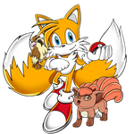 COMM: Trainer Tails SA