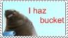 i haz bucket by Yoshi-chu