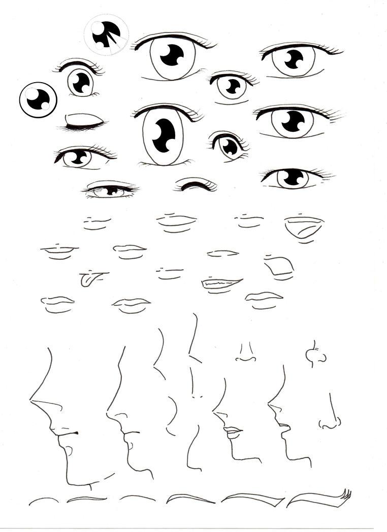 Face Models MANGA style by ECVcm
