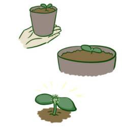 The mini-est of cacti