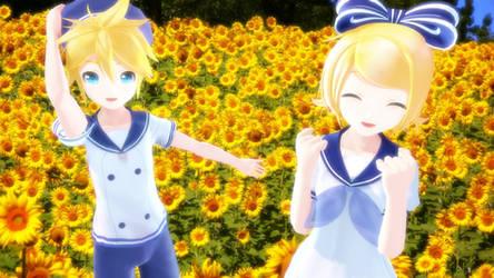 An Array of Sunflowers