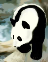 Panda For Nat by Beth-Loves-Mick
