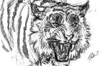 Fearful Beauty Sketch