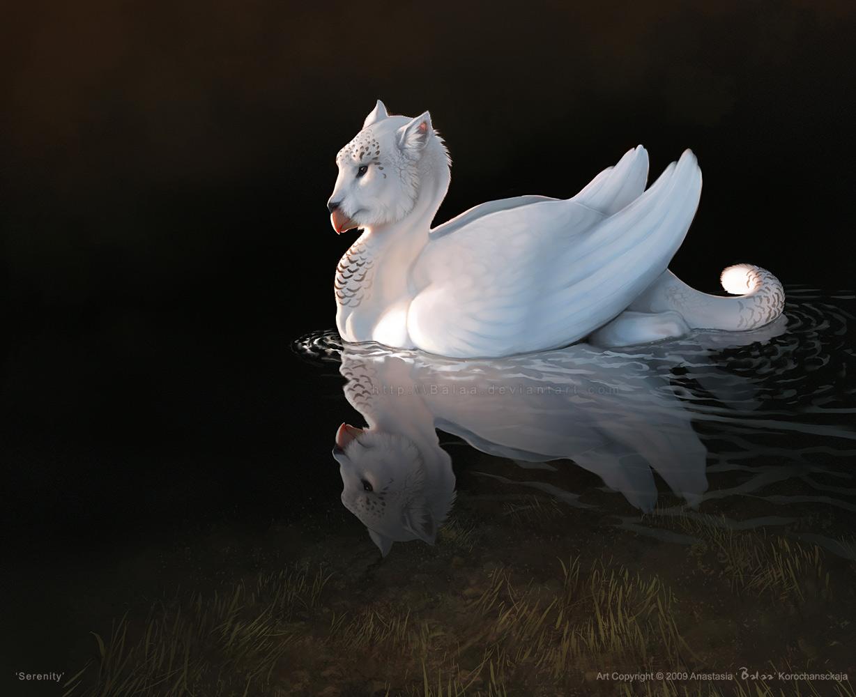 Serenity by balaa