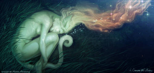 In Dreams We Belong