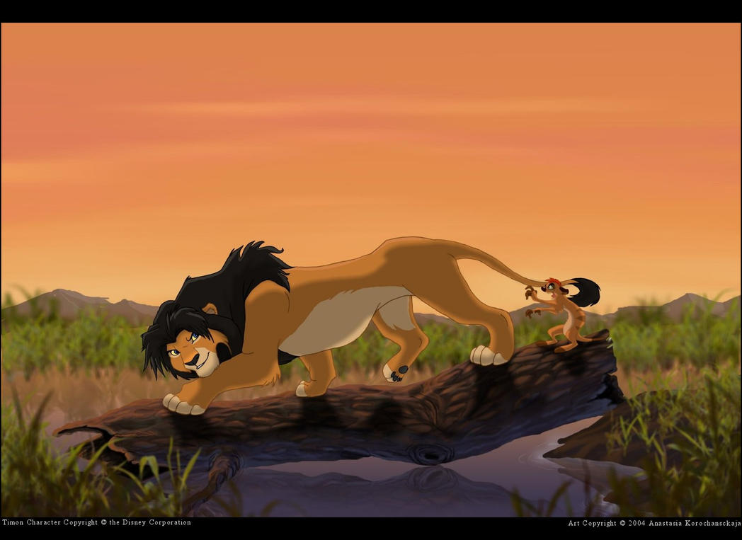 Lessons in Being a Lion by balaa