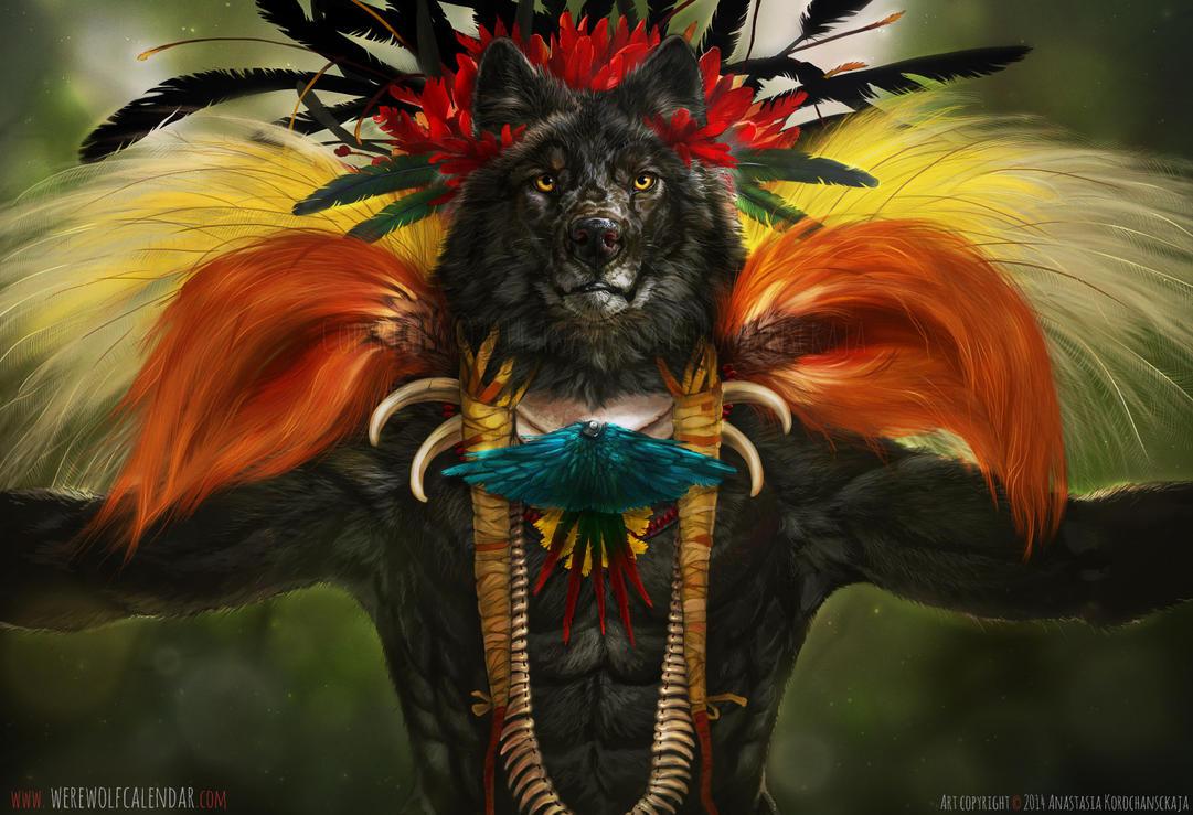 Bird of Paradise by balaa