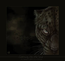 Gateway into the Soul by balaa
