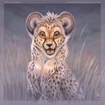 Smile at Me Cheetah