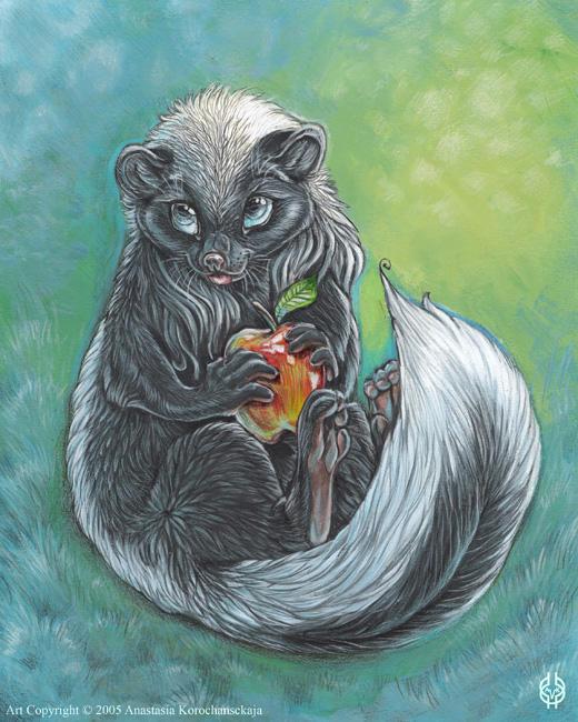 Skunk by balaa