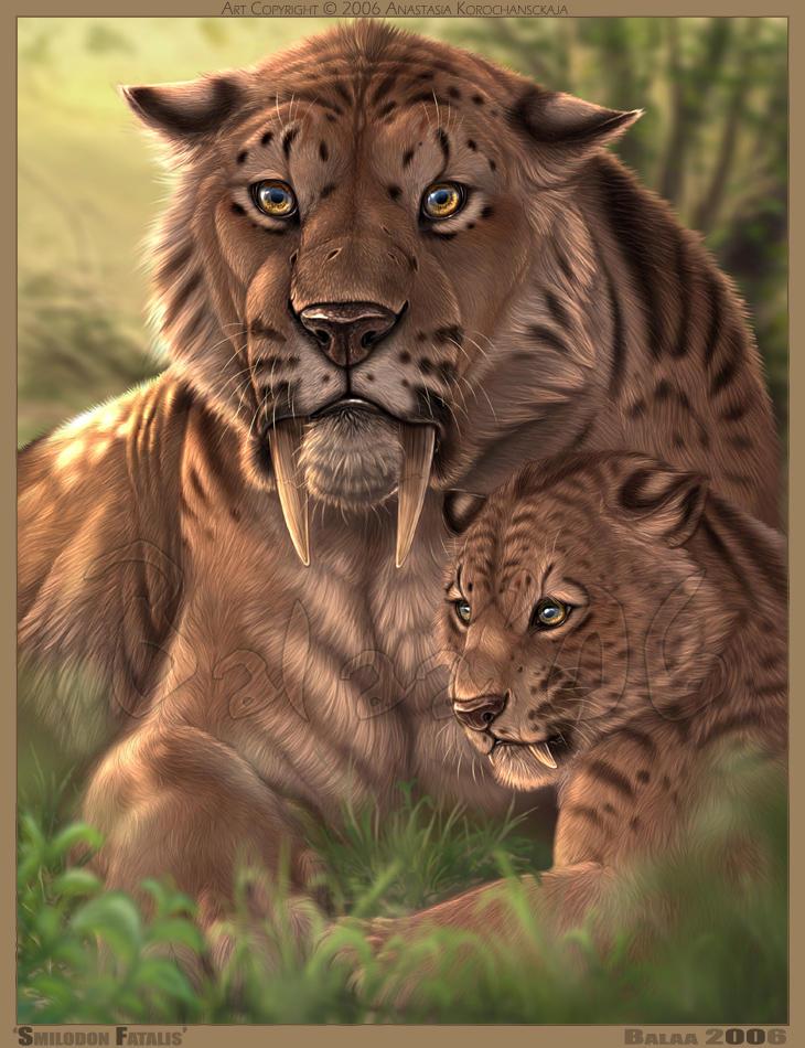 Le tigre à dent de sabre