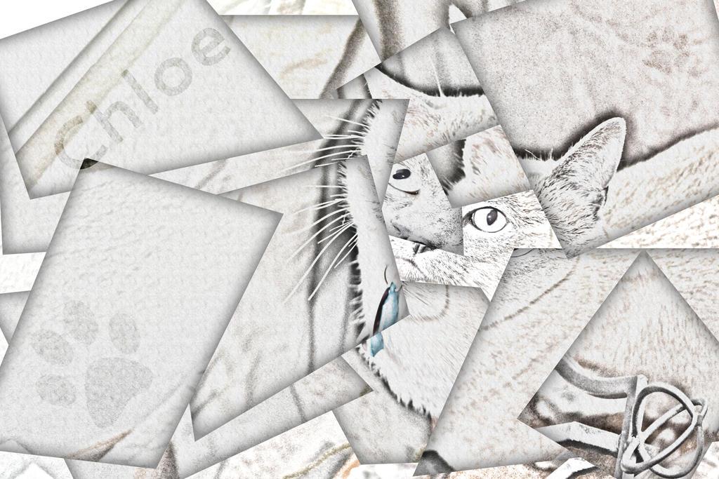 ASSG 3 - Cubeism ish? by graysfang23