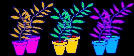 fake plants (f2u) by gaphals