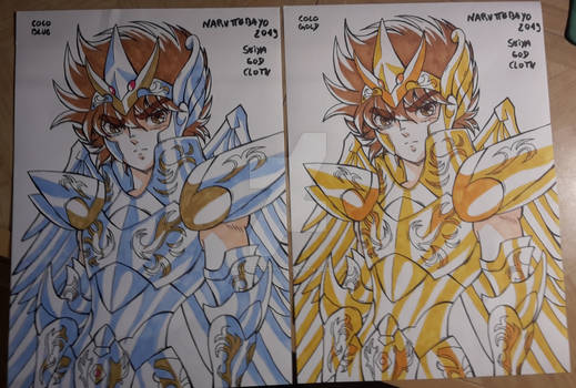 Seiya God Cloth remake handmade