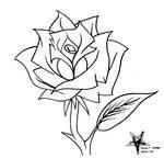 Rose Flashart
