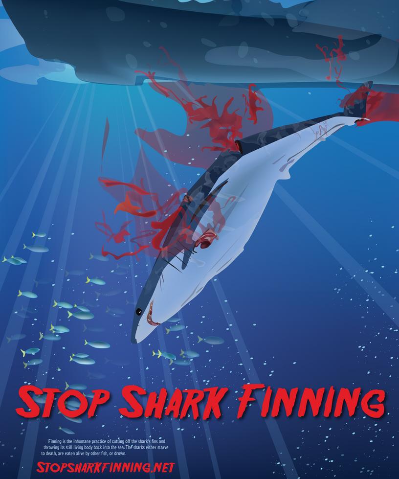 Shark finning one of the cruelest things the fishermen do