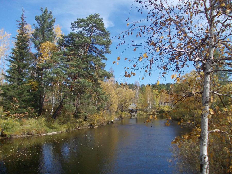 glare of autumn by Citaar