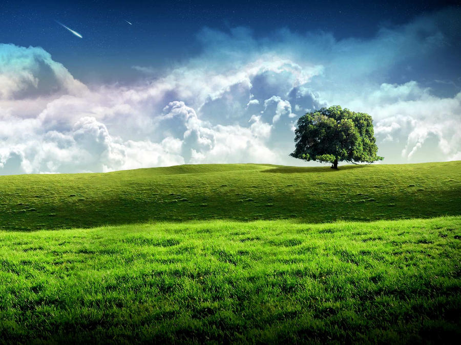 Nature Light Stock_by_machacacerebros-d39x1bh