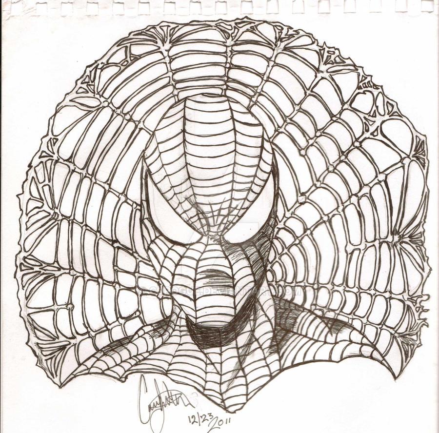 Spider-man Portrait Web by CJRogue