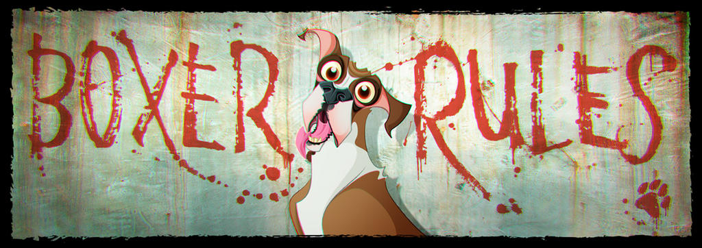 BOXER RULES by Macbeto