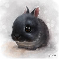 Sweet Rabbit