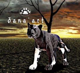 Dana'art (concept) by JALaflin