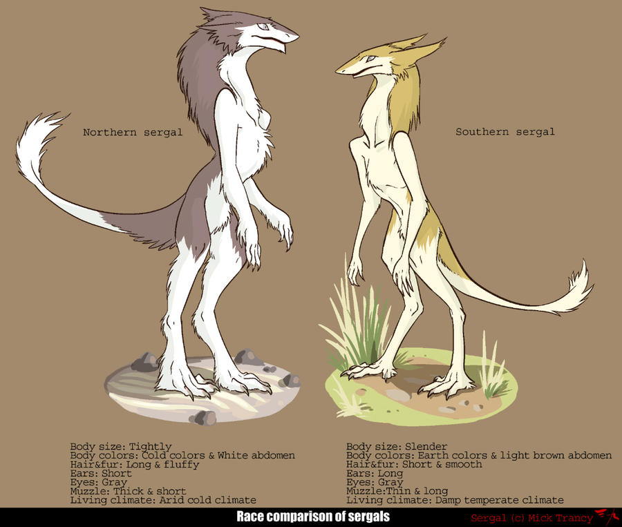 Definition Of Character Design : Sergal by pathefox on deviantart