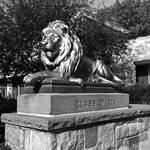 Princeton Proud