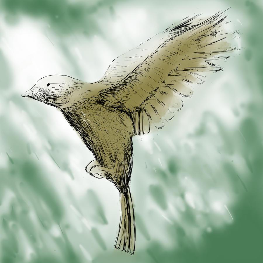 Bird by JKBH