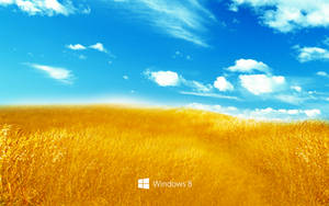 Windows 8 Bliss by rehsup