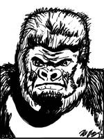 Gorilla Study 12NOV11 by SudsySutherland