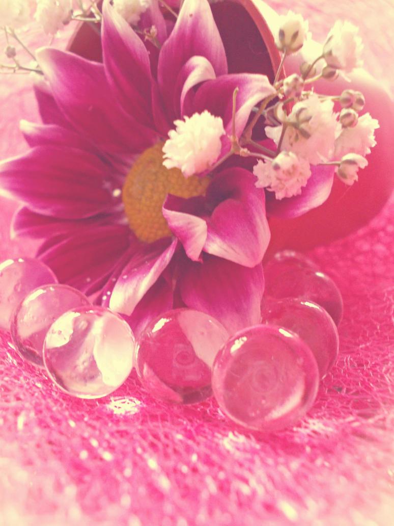 Flower217 by alealara